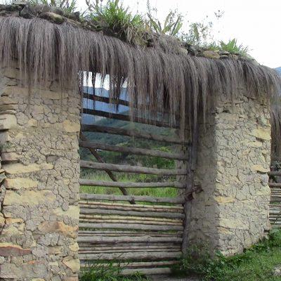 Peru del Nord un assaggio di Amazzonia peruviana